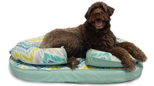 KEPP Chloe Cushion in Seaglass with large brown dog