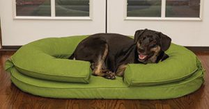 Large dog in KEPP Cody Collection pet bed, color Grasshopper